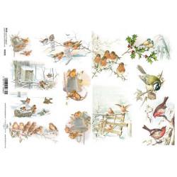 Papír rýžový A4 Malé obrázky s ptáčky