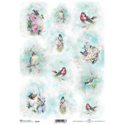 Papír rýžový A4 Shabby Chic, akvarelové obrázky s ptáčky