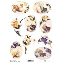 Papír rýžový A4 Oválky, narcisy a fialky