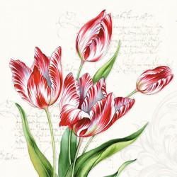Žíhané tulipány 33x33