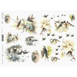 Papír soft A4 Vlaštovky a květy