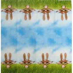 Kapesníček - Zajíc