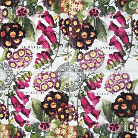 Botanical II 25x25