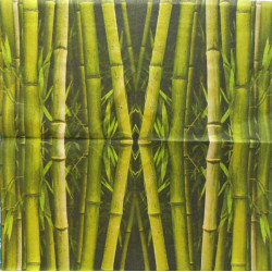 Bambus zelený 33x33
