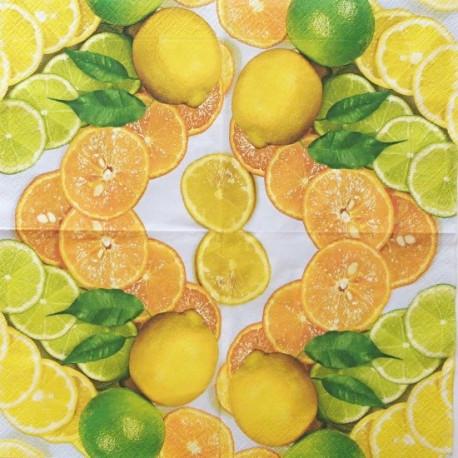 Citrusy krájené 33x33