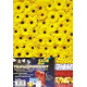 Sada FRUITS & FLOWERS mix - 5ks transp.papírů (F)