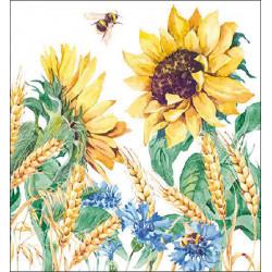 Slunečnice a pšenice 33x33