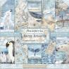 Sada papírů 30,5x30,5 190g Arctic Antarctic