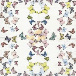 Motýlci 33x33