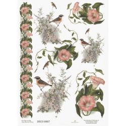 Papír rýžový A4 Svlačec, bordura, ptáčci