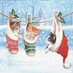 Koťata v zimě 33x33