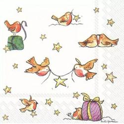Hvězda pro Tebe 25x25
