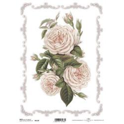 Papír rýžový A4 Plnokvěté růže v rámečku