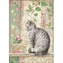 Papír rýžový A4 Orchids and Cats, kočka