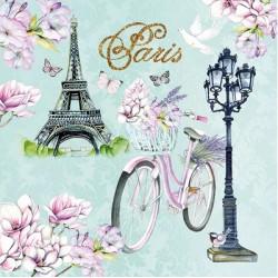 Kolo v Paříži 25x25