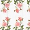 Kapesníček Růže pro Tebe