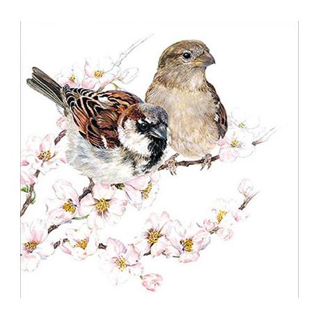 Vrabci na rozkvetlé větvičce 33x33