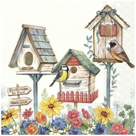 Ptačí budky k pronájmu 33x33