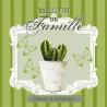 Kaktus 33x33