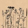 Byliny a květiny na sépiové 33x33