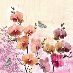 Orchid Orient 33x33