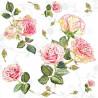 Růže na bílém 33x33