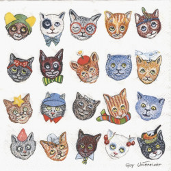 Krásné kočky 33x33