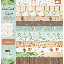 Sada papírů 15x15 Woodland Friends (Crafter´s Companion)