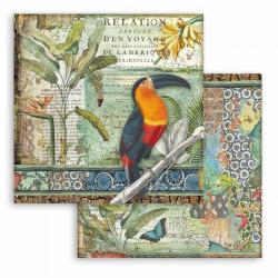 Amazonia, tukan 30,5x30,5 scrapbook