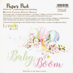 Sada papírů Baby Boom 15x15 (LC)