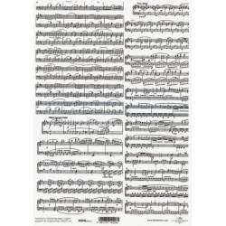 Pergamen pro scrapbook 112g - notový záznam