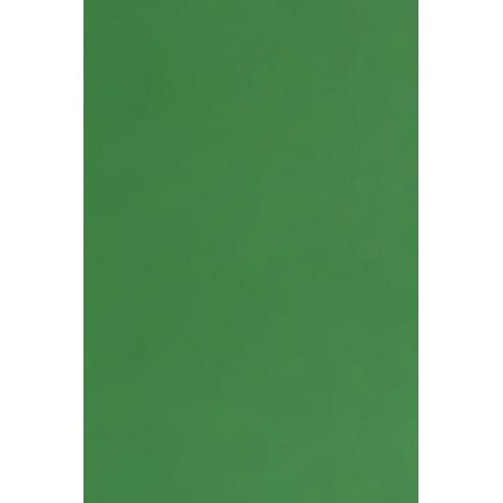Tonkarton 220g A4 - smaragdová (F)
