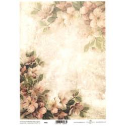 Pergamen pro scrapbook 112g - jabloňové květy