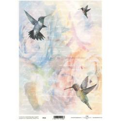 Pergamen pro scrapbook 112g - kolibříci