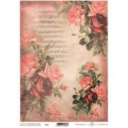 Pergamen pro scrapbook 112g - růže malované, noty