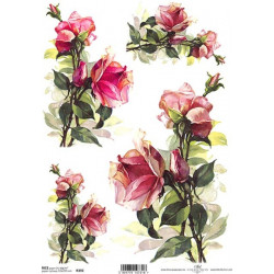 Papír rýžový A4 Růže