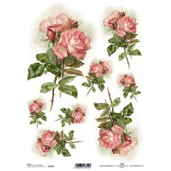 Papír rýžový A4 Růžová růže