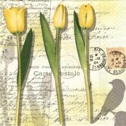 Žluté tulipány na písmu 33x33