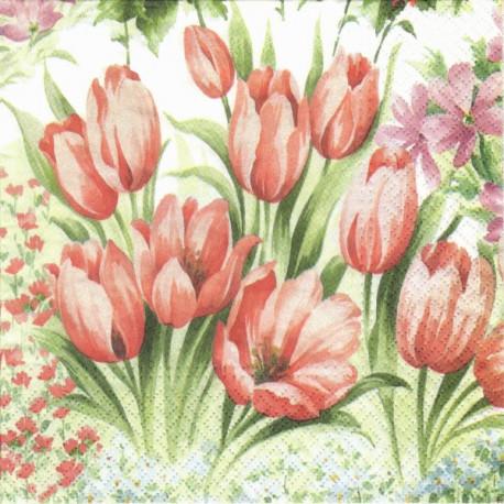 Tulipány malované 33x33