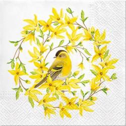 Zlatý déšť a ptáček 33x33