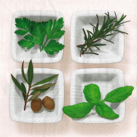 Kuchyňské bylinky 33x33