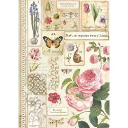 Papír rýžový A4 New Style, botanický