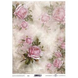 Pergamen pro scrapbook 112g - jemné růžové růže