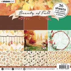 Sada papírů 15x15 Beauty of Fall nr.13 (SL)