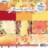 Sada papírů 15x15 Beauty of Fall nr.12 (SL)