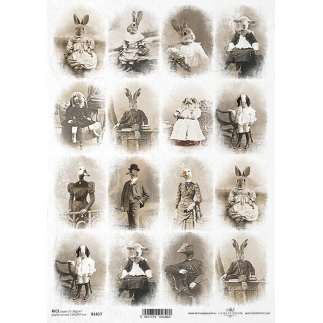 Papír rýžový A4 Zvířata v kostýmech, malé obrázky