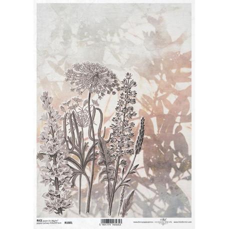 Papír rýžový A4 Luční květy akvarel VI.