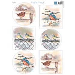 Papír A4 Mattie's mooiste Birds in winter (MD)