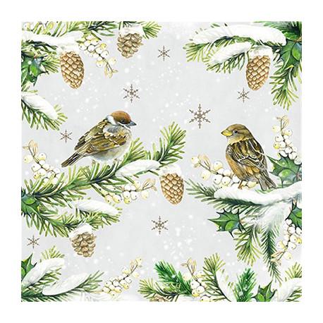 Vrabci v zimě 33x33