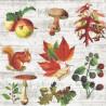 Podzimní motivy na dřevě 33x33